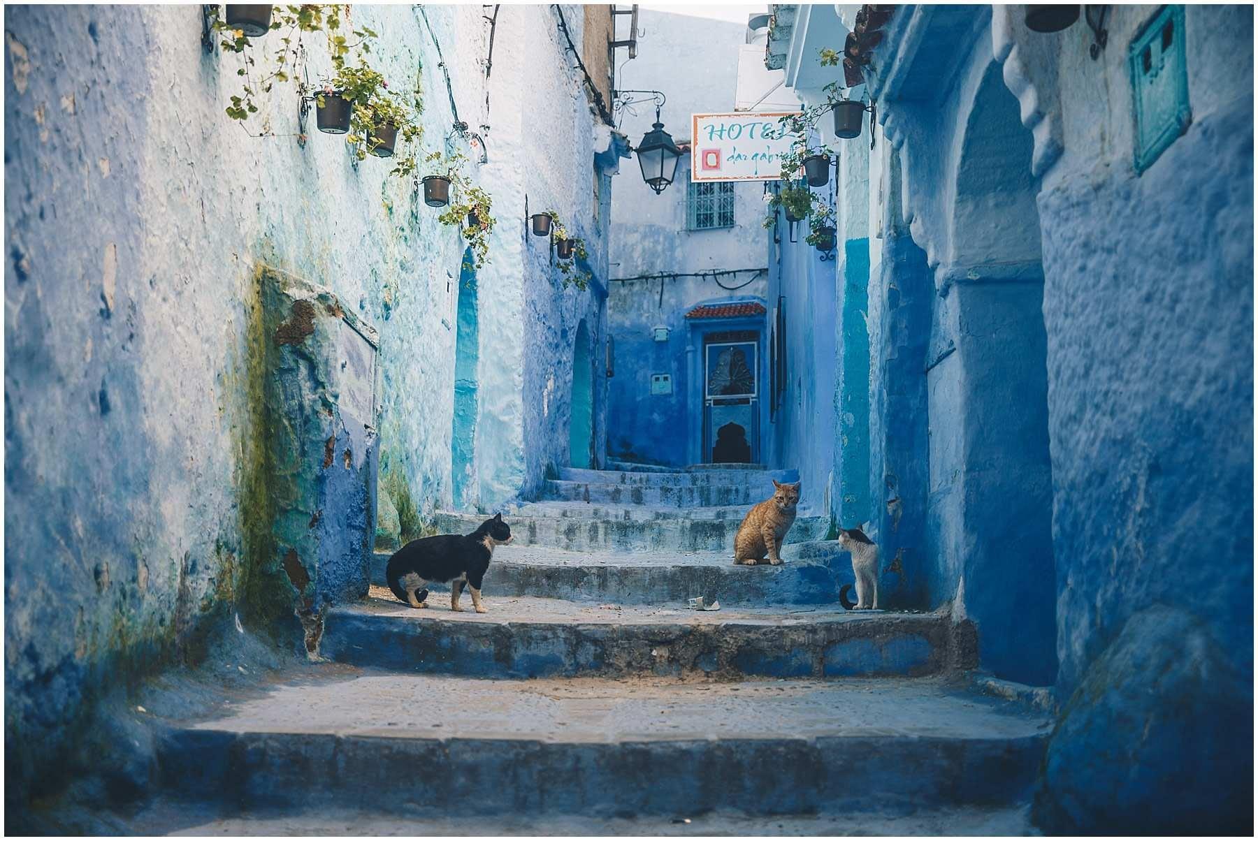 Morocco Chefchaouen_0037.jpg